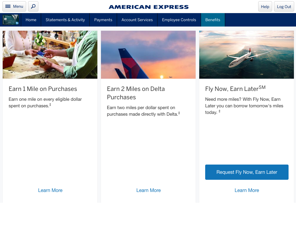 Fly now earn later borrow skymiles from american express for Fly now and pay later