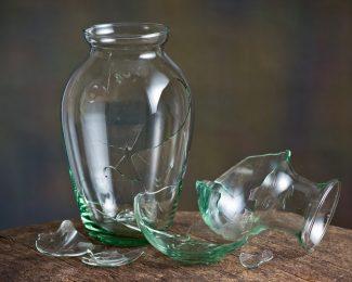 Broken Vase Extended Warranty