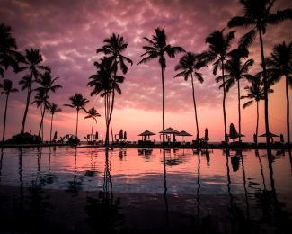 featured-sunset-palm-trees